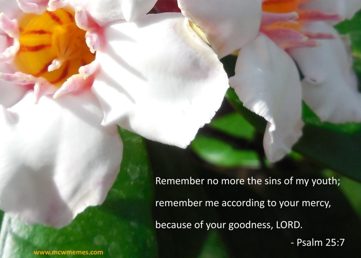 psalm_25_7