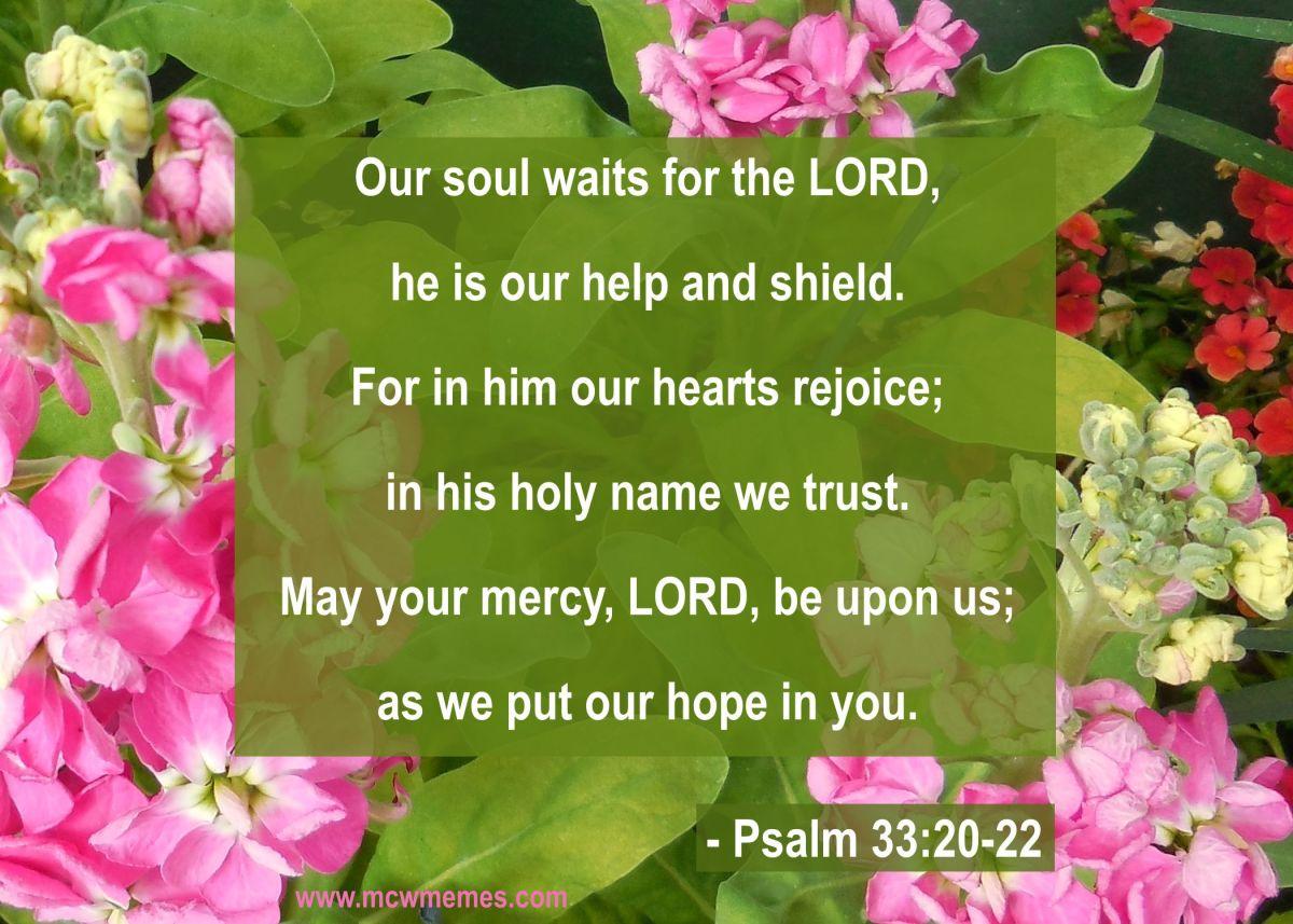 psalm_33_20_22