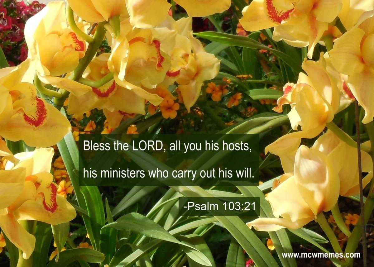 Psalm_103_23