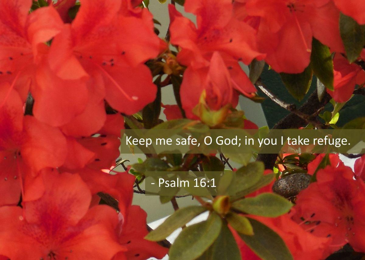 psalm_16_1