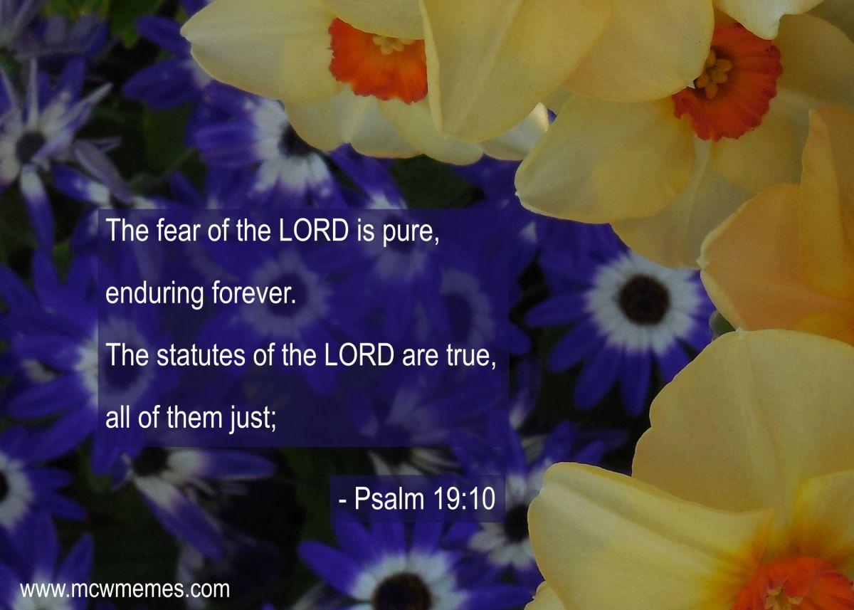 psalm_19_10