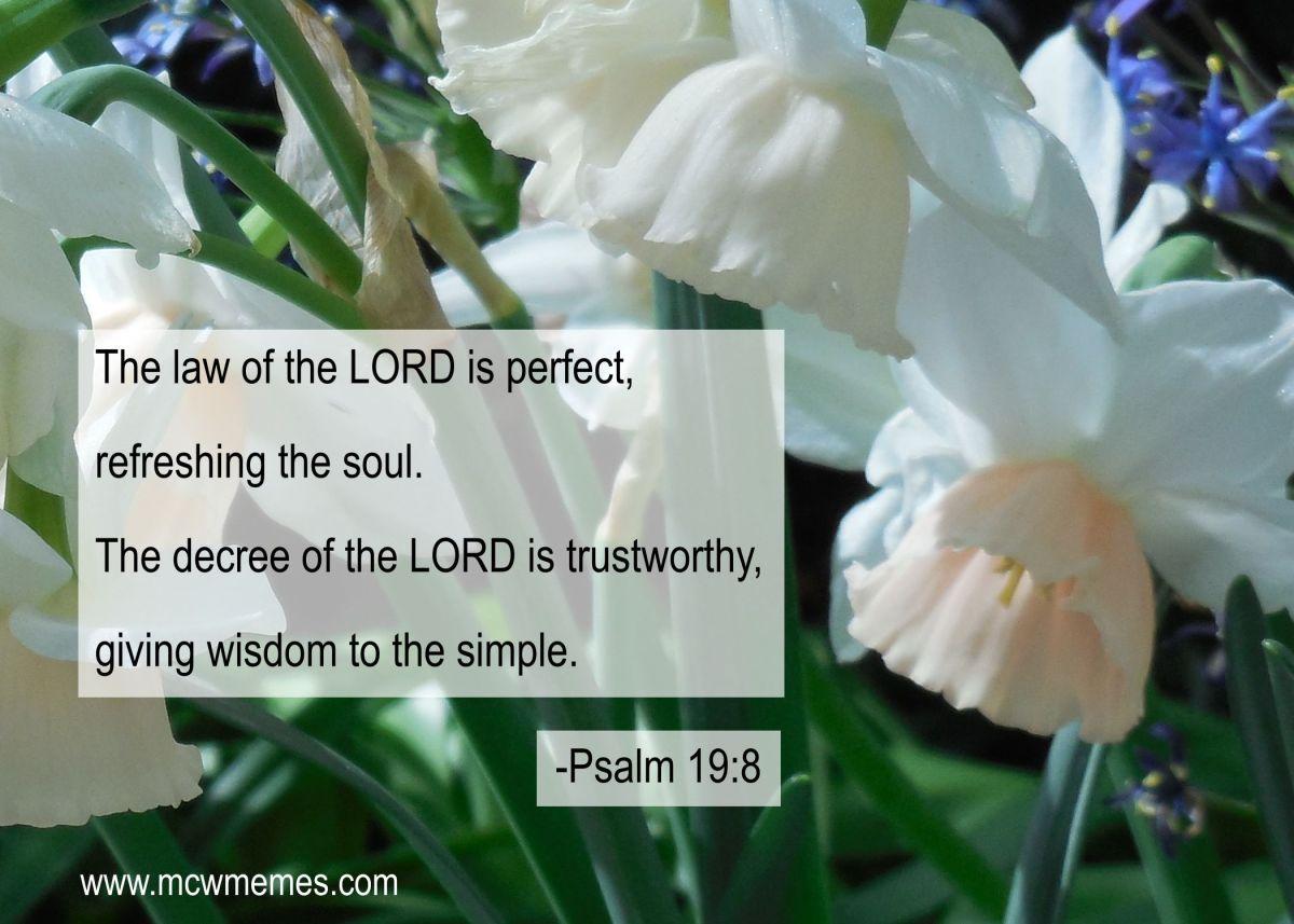 psalm_19_8