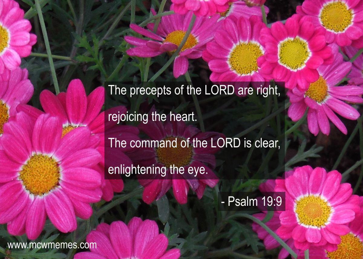 psalm_19_9