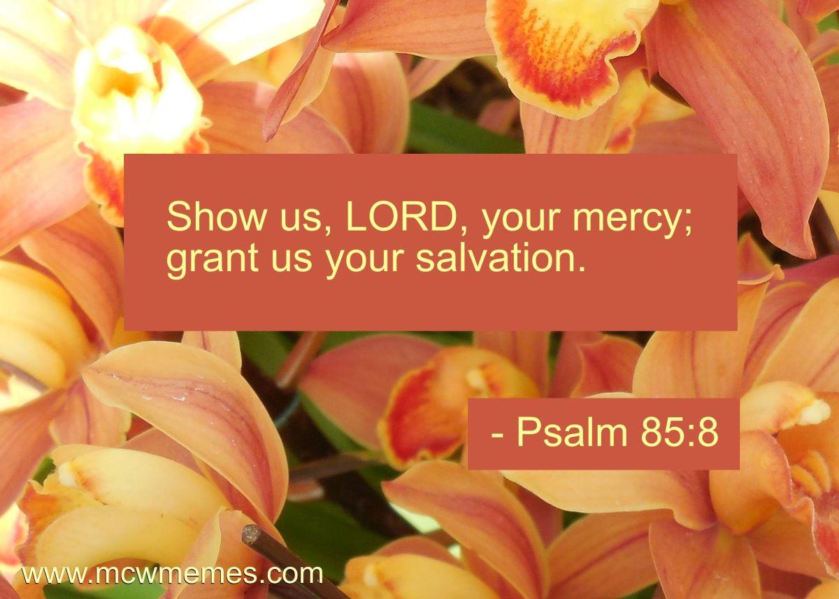 psalm_85_8