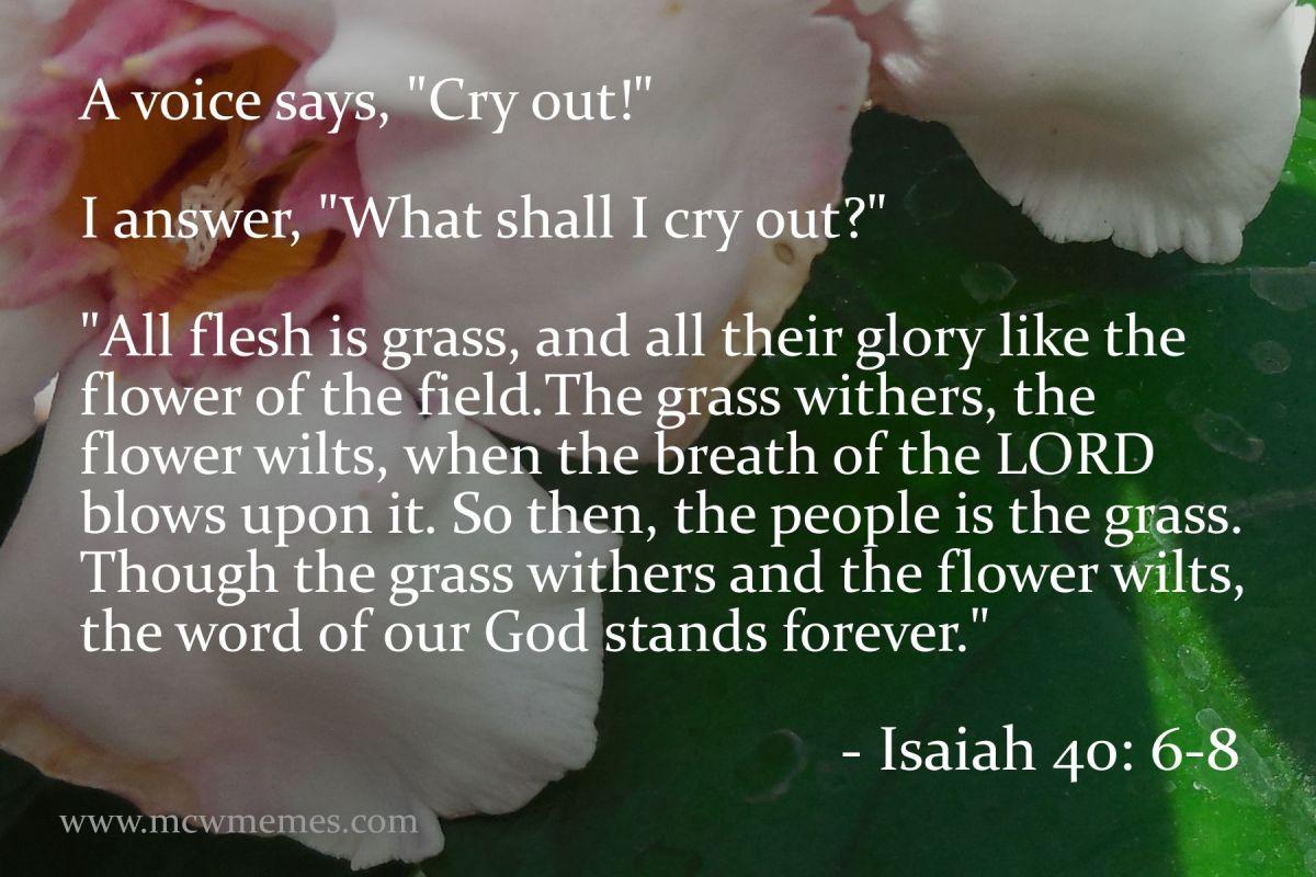 isaiah_40_6_8